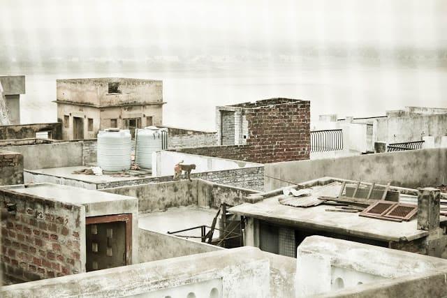Ape på toppen av en bygning. Foto: Reisetilkina.com
